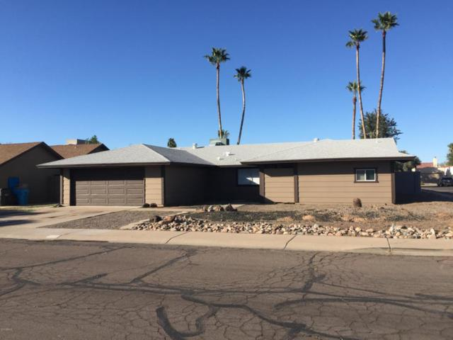4426 W Crocus Drive, Glendale, AZ 85306 (MLS #5726202) :: Yost Realty Group at RE/MAX Casa Grande