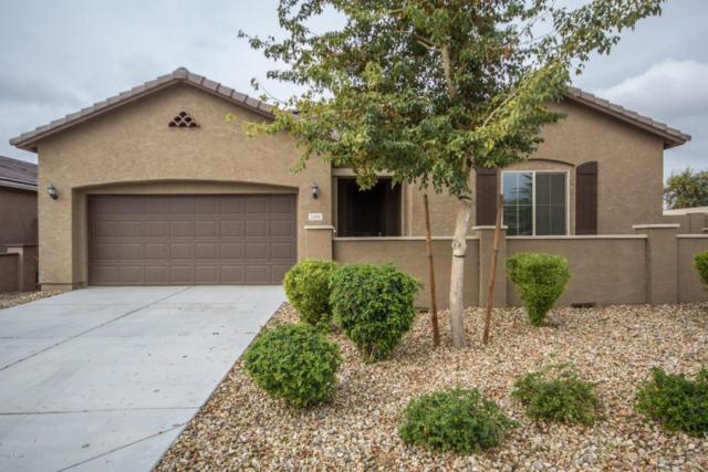 2102 S 122ND Drive, Avondale, AZ 85323 (MLS #5726218) :: Kortright Group - West USA Realty