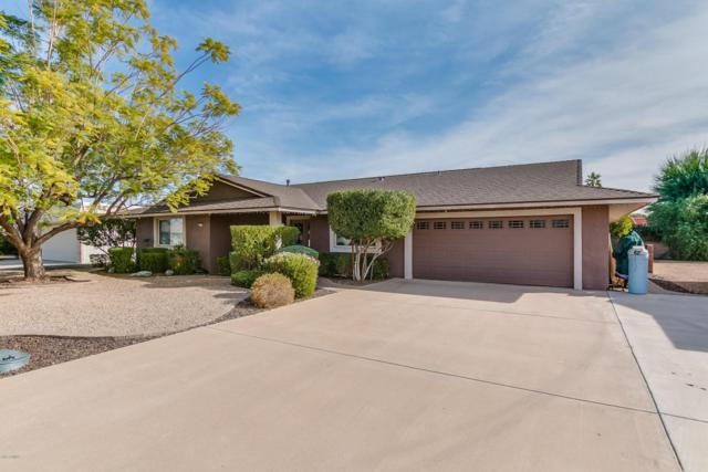 13837 N 103RD Avenue, Sun City, AZ 85351 (MLS #5726241) :: Occasio Realty