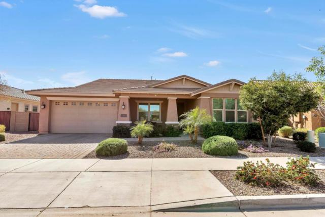 22075 E Rosa Road, Queen Creek, AZ 85142 (MLS #5726242) :: Realty Executives