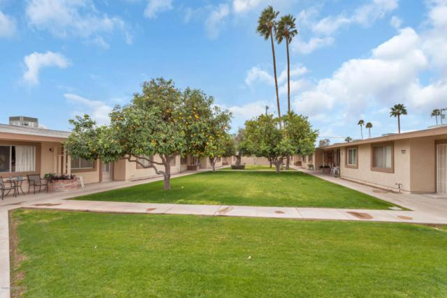 10607 W Coggins Drive, Sun City, AZ 85351 (MLS #5726253) :: Occasio Realty