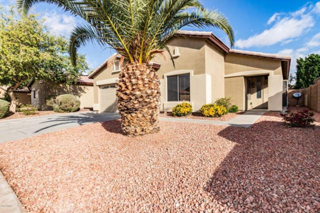 9462 W Frank Avenue, Peoria, AZ 85382 (MLS #5726285) :: Power Realty Group Model Home Center