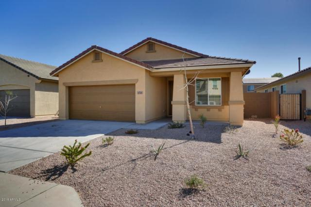 11749 W Chase Lane, Avondale, AZ 85323 (MLS #5726325) :: Devor Real Estate Associates