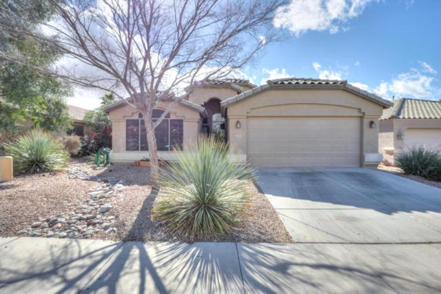 42501 W Hall Drive, Maricopa, AZ 85138 (MLS #5726363) :: Power Realty Group Model Home Center