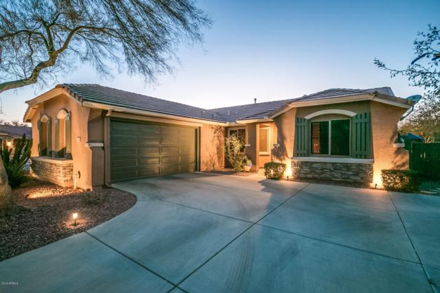 40606 N Peale Court, Anthem, AZ 85086 (MLS #5726392) :: Yost Realty Group at RE/MAX Casa Grande