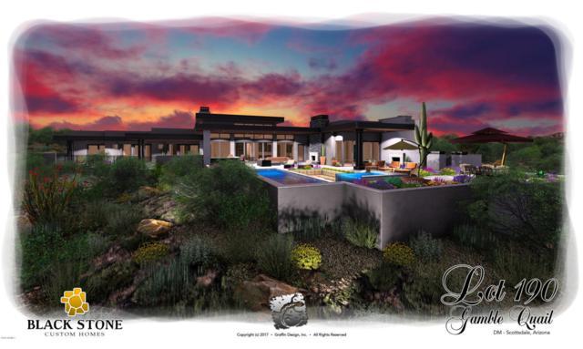 37614 N 94TH Street, Scottsdale, AZ 85262 (MLS #5726399) :: Yost Realty Group at RE/MAX Casa Grande