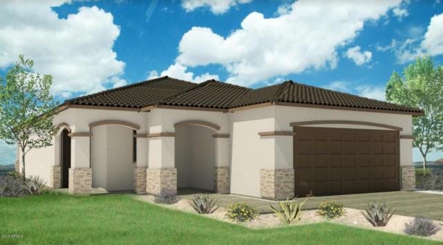 6512 S 38th Drive, Phoenix, AZ 85041 (MLS #5726427) :: Occasio Realty