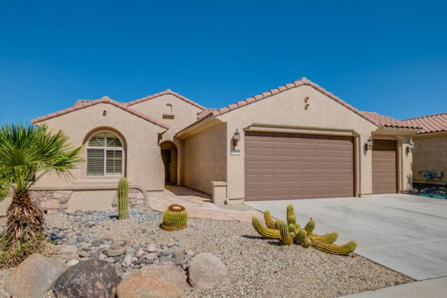 26454 W Potter Drive, Buckeye, AZ 85396 (MLS #5726430) :: Devor Real Estate Associates