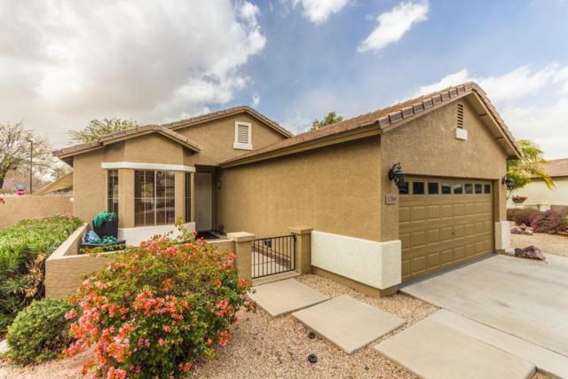 1766 S Longspur Lane, Gilbert, AZ 85295 (MLS #5726453) :: Arizona Best Real Estate