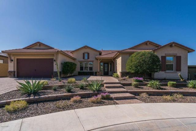 833 W Bonanza Lane, Phoenix, AZ 85085 (MLS #5726477) :: Yost Realty Group at RE/MAX Casa Grande