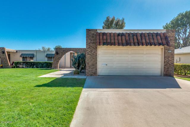 10015 W Shasta Drive, Sun City, AZ 85351 (MLS #5726478) :: Occasio Realty