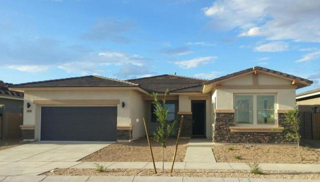 22659 E Duncan Street, Queen Creek, AZ 85142 (MLS #5726501) :: Realty Executives