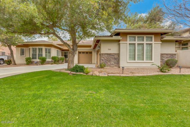 3146 E Marlene Drive, Gilbert, AZ 85296 (MLS #5726509) :: Arizona Best Real Estate