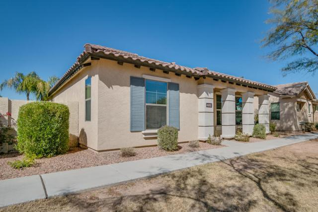 3599 S Swan Drive, Gilbert, AZ 85297 (MLS #5726520) :: The Everest Team at My Home Group