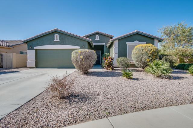 220 S San Luis Rey Trail, Casa Grande, AZ 85194 (MLS #5726523) :: Yost Realty Group at RE/MAX Casa Grande