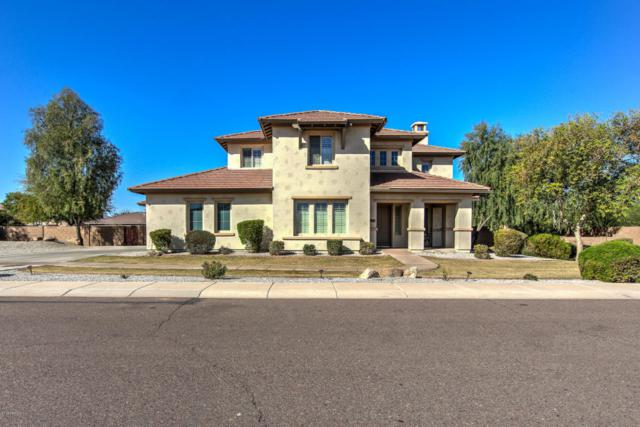 6604 S 67TH Drive, Laveen, AZ 85339 (MLS #5726536) :: Kelly Cook Real Estate Group