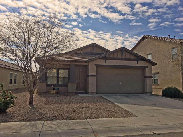 881 E Desert Rose Trail, San Tan Valley, AZ 85143 (MLS #5726547) :: Realty Executives