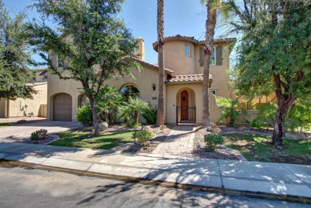4453 S Greythorne Way, Chandler, AZ 85248 (MLS #5726551) :: Occasio Realty
