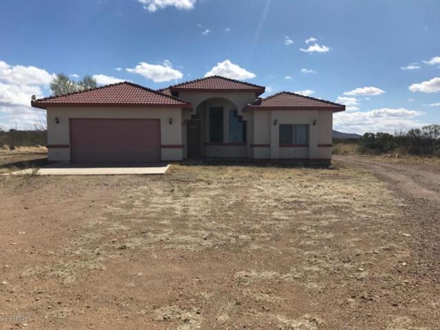 3437 E Geronimo Trail, Douglas, AZ 85607 (MLS #5726563) :: Yost Realty Group at RE/MAX Casa Grande