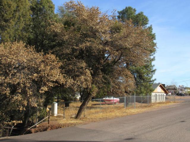 104 W Phoenix Street, Payson, AZ 85541 (MLS #5726595) :: My Home Group
