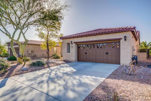 12347 W Alyssa Lane, Peoria, AZ 85383 (MLS #5726613) :: Occasio Realty