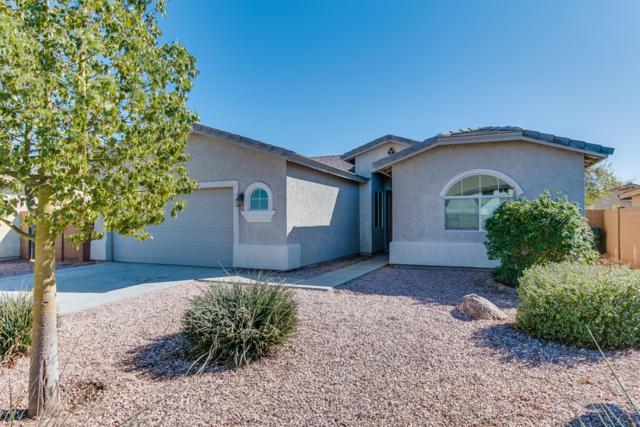 7413 W Park Street, Laveen, AZ 85339 (MLS #5726646) :: Kelly Cook Real Estate Group