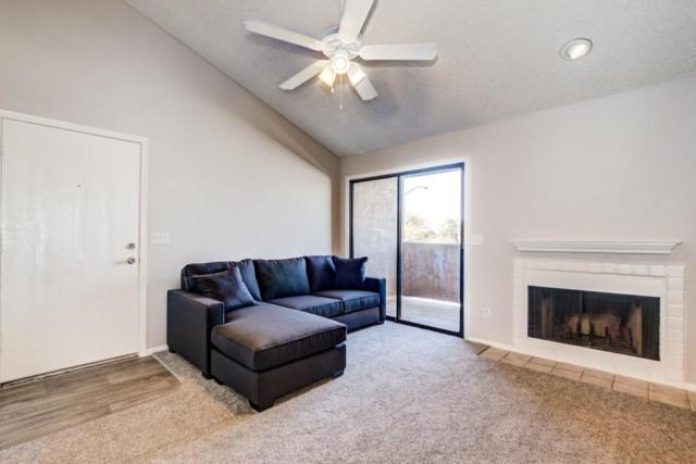 533 W Guadalupe Road #2006, Mesa, AZ 85210 (MLS #5726648) :: Power Realty Group Model Home Center