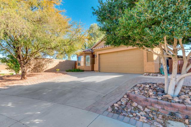 18353 W Eva Street, Waddell, AZ 85355 (MLS #5726673) :: Occasio Realty