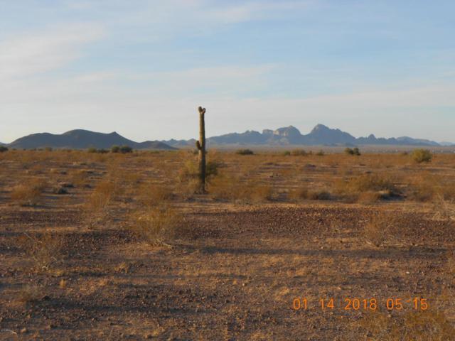 41050 W Pecos Road, Tonopah, AZ 85354 (MLS #5726681) :: Power Realty Group Model Home Center