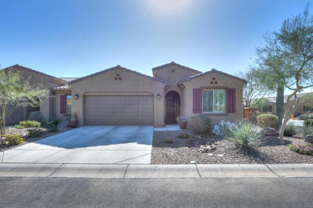 4859 W Gulch Drive, Eloy, AZ 85131 (MLS #5726683) :: Power Realty Group Model Home Center