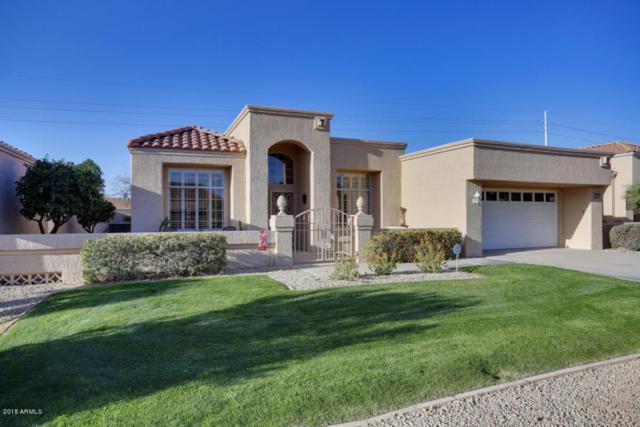 14115 W Desert Glen Drive, Sun City West, AZ 85375 (MLS #5726694) :: Power Realty Group Model Home Center