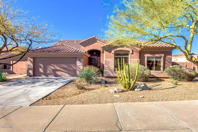 10390 E Bahia Drive, Scottsdale, AZ 85255 (MLS #5726707) :: Power Realty Group Model Home Center