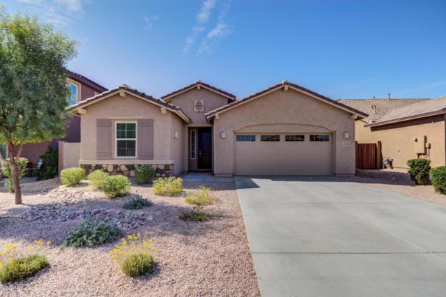 13245 W Avenida Del Rey, Peoria, AZ 85383 (MLS #5726712) :: Occasio Realty