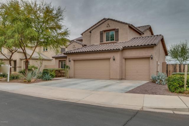 10837 E Ravenna Avenue, Mesa, AZ 85212 (MLS #5726729) :: Realty Executives