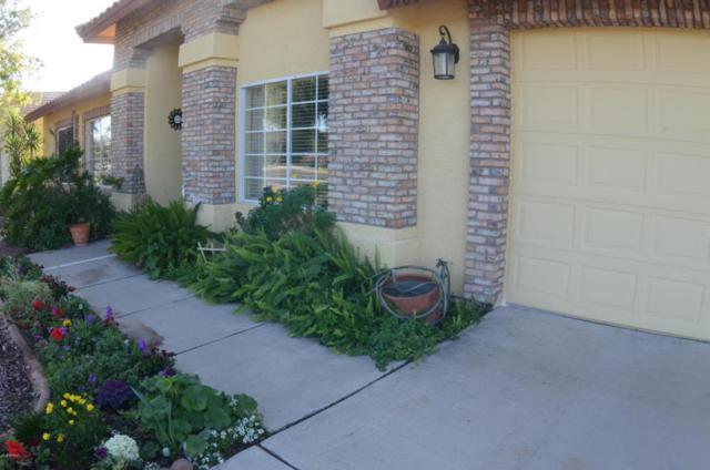3709 E Adobe Street, Mesa, AZ 85205 (MLS #5726731) :: Realty Executives