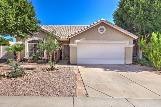 15215 S 47TH Street, Phoenix, AZ 85044 (MLS #5726746) :: Realty Executives