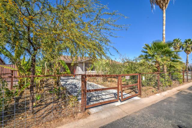 652 E Kachina Avenue, Apache Junction, AZ 85119 (MLS #5726761) :: Realty Executives