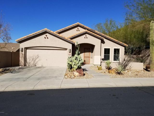 6114 W Spur Drive, Phoenix, AZ 85083 (MLS #5726778) :: Realty Executives