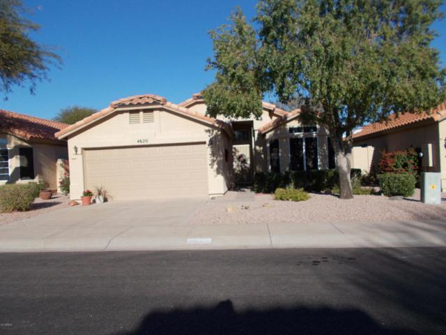 4620 E Shomi Street, Phoenix, AZ 85044 (MLS #5726781) :: Kelly Cook Real Estate Group