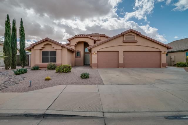 9853 E Pampa Avenue, Mesa, AZ 85212 (MLS #5726785) :: Realty Executives