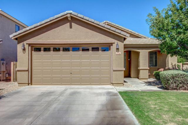 6774 W Evergreen Terrace, Peoria, AZ 85383 (MLS #5726794) :: Kelly Cook Real Estate Group
