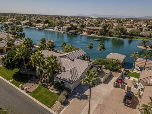 340 N Shore Lane, Gilbert, AZ 85233 (MLS #5726800) :: Realty Executives