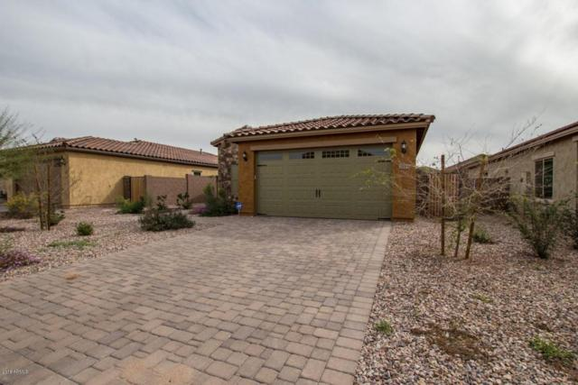 2715 E Mews Road, Gilbert, AZ 85298 (MLS #5726829) :: Occasio Realty
