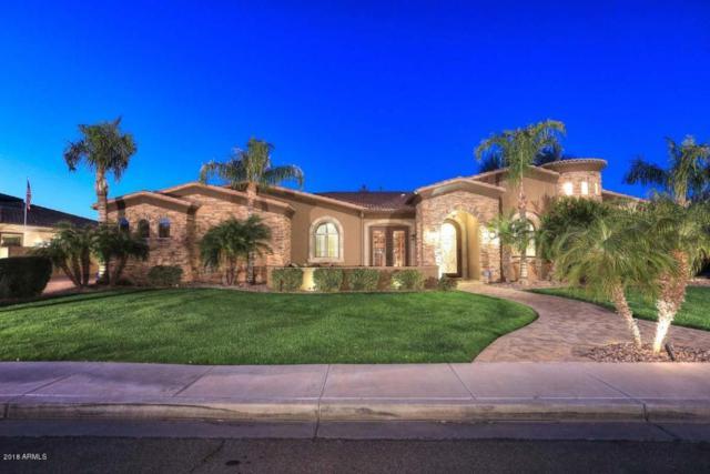 3464 E Dartmouth Street, Mesa, AZ 85213 (MLS #5726854) :: Yost Realty Group at RE/MAX Casa Grande