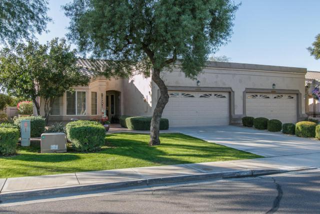 9025 W Behrend Drive, Peoria, AZ 85382 (MLS #5726856) :: Devor Real Estate Associates