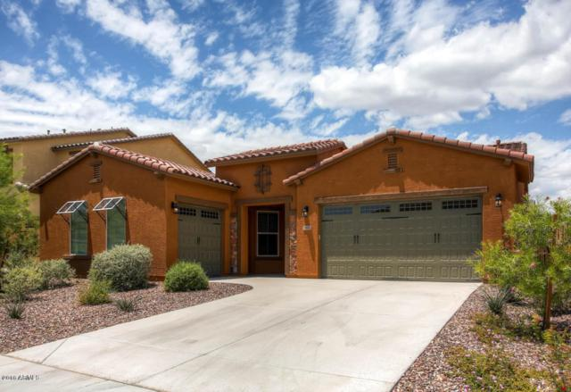 31682 N 131ST Avenue, Peoria, AZ 85383 (MLS #5726858) :: Devor Real Estate Associates