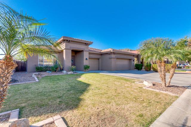 9829 W Bent Tree Drive, Peoria, AZ 85383 (MLS #5726955) :: Devor Real Estate Associates