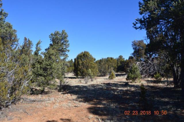 3242 Jeep Trail, Overgaard, AZ 85933 (MLS #5726979) :: Yost Realty Group at RE/MAX Casa Grande
