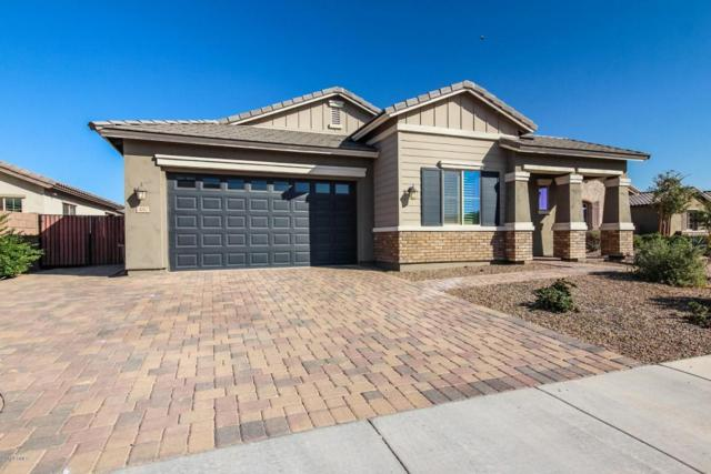 480 E Torrey Pines Place, Chandler, AZ 85249 (MLS #5726991) :: Occasio Realty