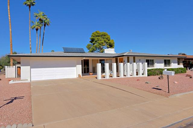 4428 W Laurie Lane, Glendale, AZ 85302 (MLS #5727034) :: Devor Real Estate Associates
